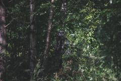 Snigel Design Ghillie Cloak 14. Standing, photographed from approx. 15 m away.