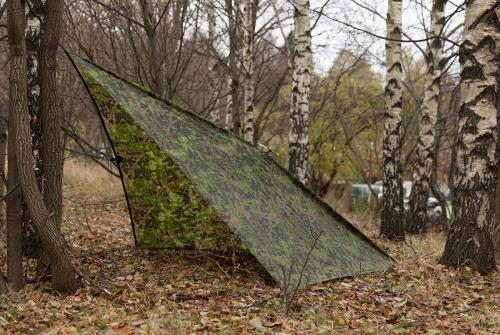 Image result for tie the laces on nearby trunks and put a poncho or blanket over them in order to make a shelter for you